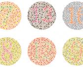 El daltonismo en la escuela
